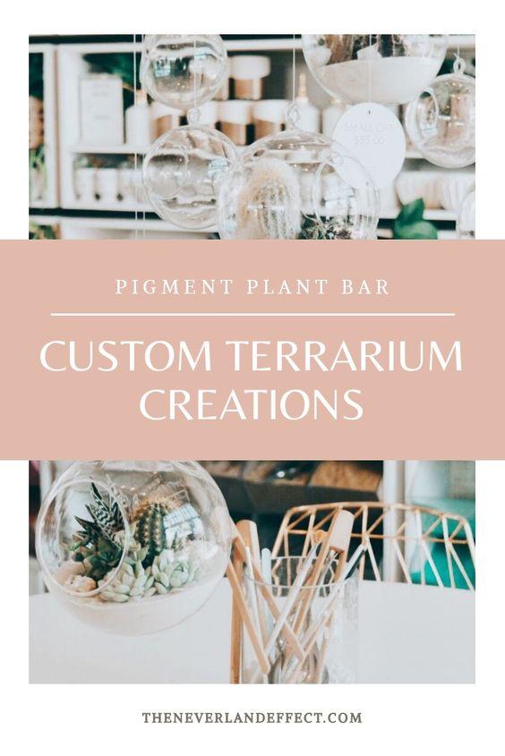 Pinterest Image Pigment Plant Bar